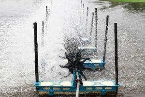occupation des poissons d'eau douce photo