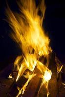 feu de bois.