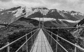 long pont suspendu dans le parc national du mont cook photo