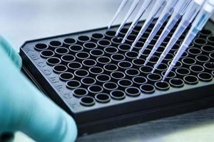 pipette avec plaque de culture cellulaire