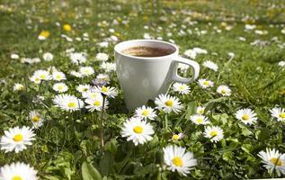 matin de café photo