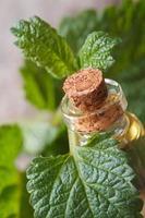 Huiles aromatiques mélisse dans une bouteille en verre avec des feuilles photo