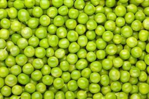 fond de pipi vert