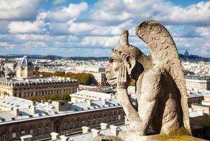 Paris vue aérienne avec chimère photo