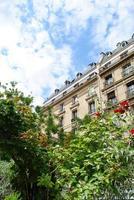 jardin à paris avec immeuble