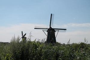 vieux moulin à vent à kinderdijk photo
