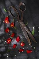 couper le poivron rouge photo