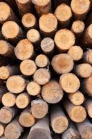 empilé en bois photo