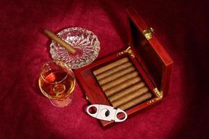 cigares photo