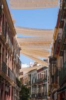 Séville (Sapin - Europe)