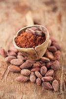 poudre de cacao dans une cuillère sur des fèves de chocolat de cacao torréfiées photo