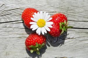 objets d'été - marguerite et fraises
