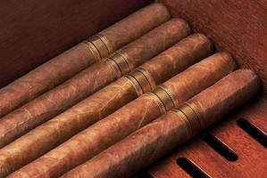 gros plan de cigares photo