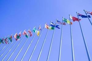 agitant des drapeaux