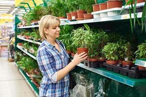 femme choisit des plantes d'intérieur en magasin