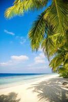 plage des maldives photo