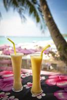 boissons au bar de la plage