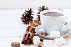 boisson au cacao avec des guimauves