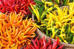 pappers organiques colorés photo