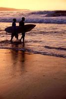 surfer tard photo