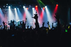 foule de concert