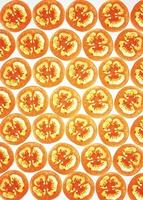 tranches de tomate sur blanc, rétro-éclairé photo