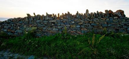 herbe et pierre photo