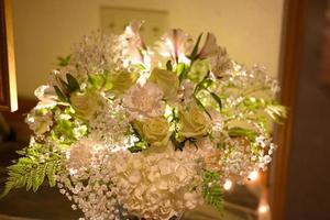 fleurs éclairées