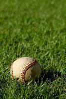 base-ball photo