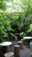 jardin de la ville photo