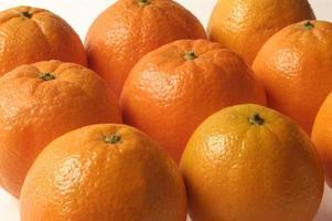 naranjas photo