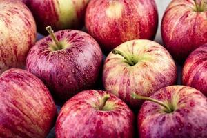 pommes fraîches photo