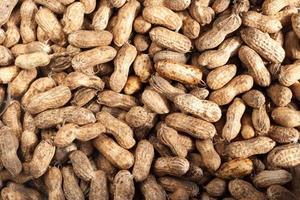cacahuètes photo