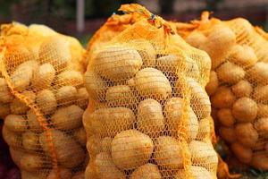 pommes de terre dans le sac photo