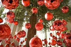 accrocher des boules de Noël photo