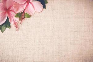 Fleurs d'hibiscus rose sur toile de lin, copie espace fond, sélective photo