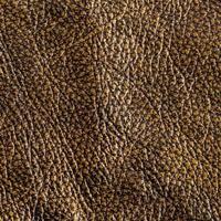 texture cuir.