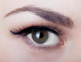 œil humain photo