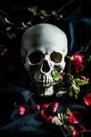 crâne humain photo