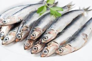 anchois frais bouchent