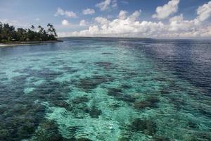 récif indonésien et dépose photo