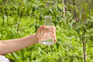 test de pureté de l'eau, liquide dans la verrerie de laboratoire photo