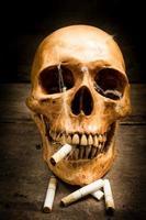 crâne avec des cigarettes, nature morte. photo