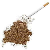 cigarette et tabac en forme de biélorussie (série) photo