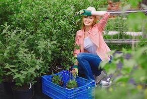 replanter des fleurs photo
