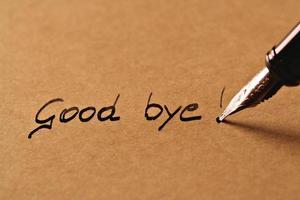 Au revoir! photo