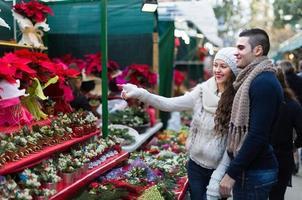 fille avec garçon choisissant fleur de Noël photo