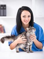 vétérinaire photo