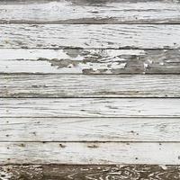 la texture du bois blanc avec fond de motifs naturels