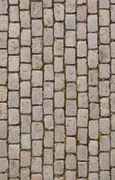 texture de la chaussée